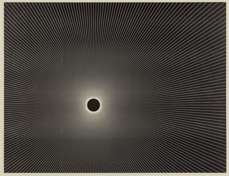 Untitled, 2014 Laser toner on paper, unique