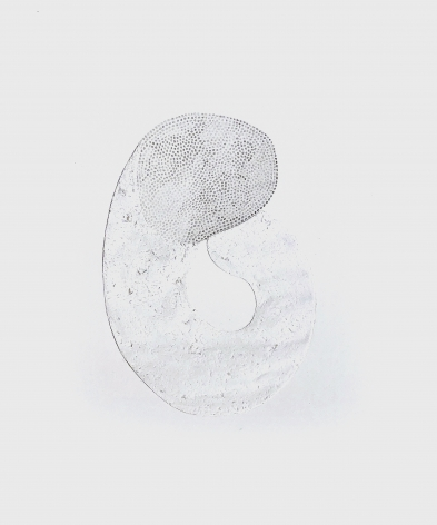 Grace Beck Hold, 2020 Graphite on rag paper 10h x 8w in