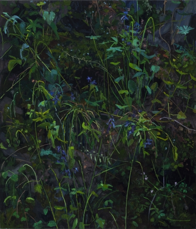 Wildflowers, 2018