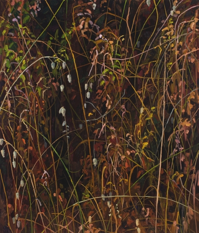 Claire Sherman Grass and Leaves, 2020