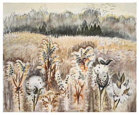 Brown Land, c. 1962-63.