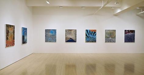 Barbara Takenaga: New Paintings