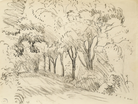 Tunnel Through the Trees, Study, n.d., Pencil on paper