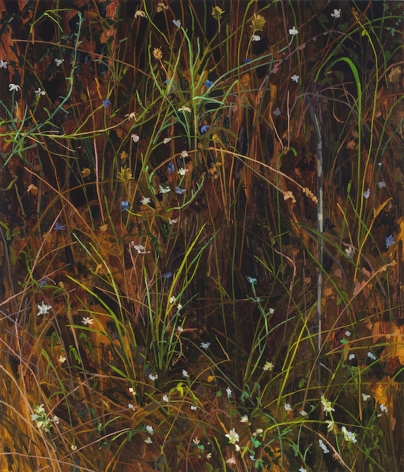 Claire Sherman Grass and Flowers, 2020