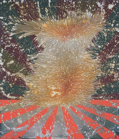 Barbara Takenaga, Harmo, 2013.