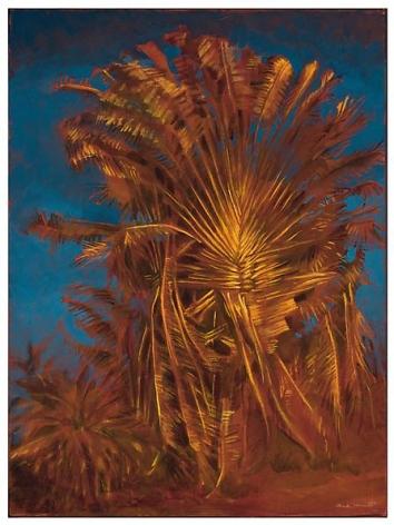 Wild Palm, 2012