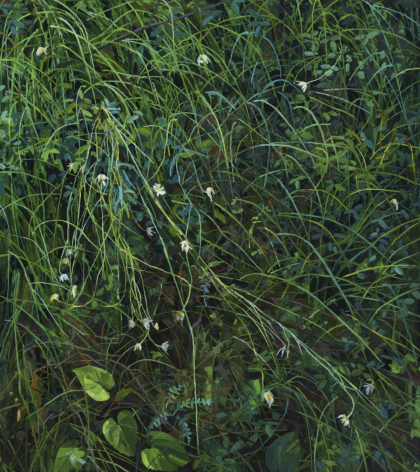Claire Sherman Wildflowers and Grass,2020
