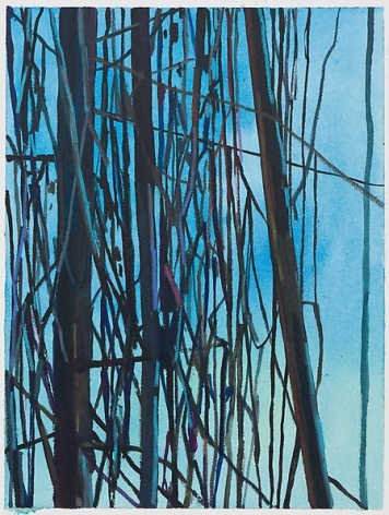 Vines, 2014 Mixed media on paper, 5 3/4 x 4 3/8 inches (image); 12 x 9 inches (paper)
