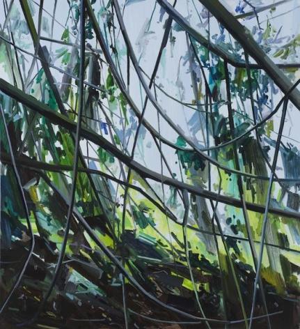 Vines, 2015 Oil on canvas