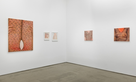 "Installation view of exhibition Katarina Riesing, ""Razor Burn"""