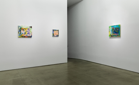 "Installation view of Carolyn Case, ""Before It Sinks In"""