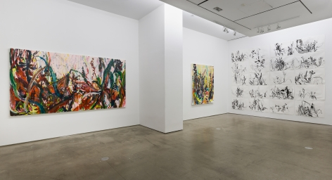 Installation view of Allison Gildersleeve's solo exhibition. Depicting abstracted floral paintings and drawings on the wall