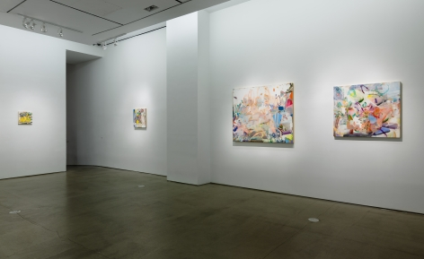 Installation image of Carolyn Case's solo exhibition. Paintings line the gallery walls by a doorway