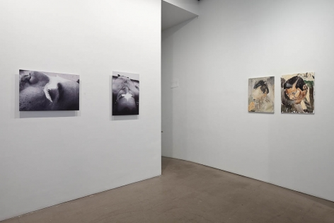 "Installation view of ""Salvajes"""