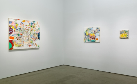 Installation image of Carolyn Case's solo exhibition. Paintings line the gallery walls