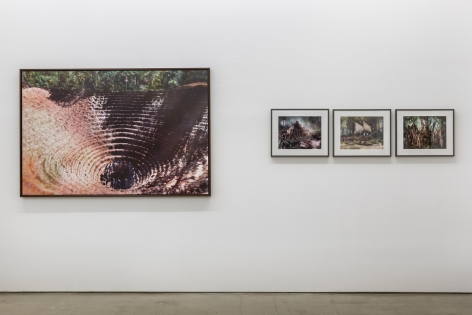 """An installation view of Jasper de Beijer's exhibition, """"The Brazilian Suitcase"""". Large and small framed photographs are on the walls."""