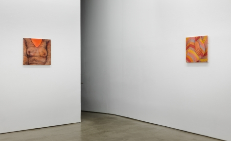 "Installation view of exhibition Katarina Riesing, ""Razor Burn"""