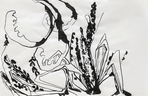 ink on paper drawing