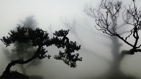 WU CHI-TSUNG, Landscape In The Mist 001, 2012