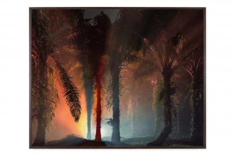 JULIAN CHARRIÈRE, An Invitation to Disappear - Sanggau, 2018