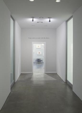 Callum Innes Colm Toibin Sean Kelly Gallery