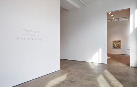 Diana Fonseca Quinones Sean Kelly Gallery
