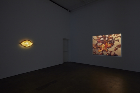 Installation view of Laurent Grasso: OttO at Sean Kelly, New York