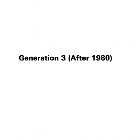 Generation 3 (After 1980)