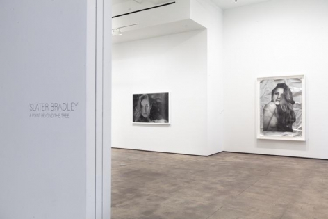 Slater Bradley Sean Kelly Gallery