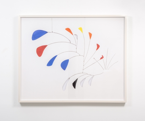 JOSE DAVILA, Untitled (Peacock), 2018