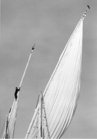 luxor, egypt (sails)