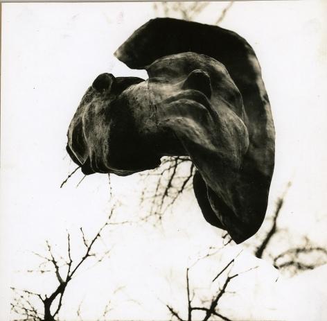Untitled, c. 1986-1988, Vintage sepia-toned gelatin silver print