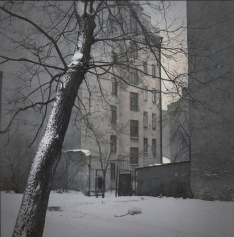 Snow Tree (Kolomna),2005