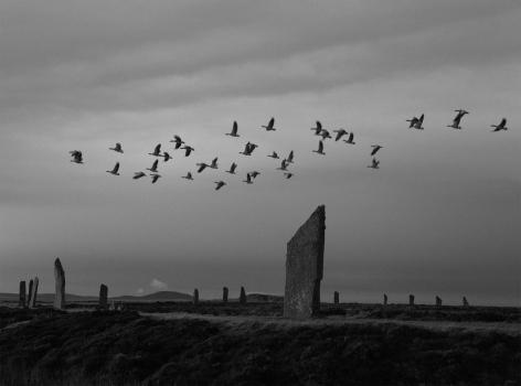 Pentti Sammallahti (b. 1950, Helsinki), Ring of Brodgar, Orkney, Scotland, 2016