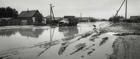 Naryn-Huduk, Kalmukia, Russia (dog in mud), 1991, Gelatin silver print