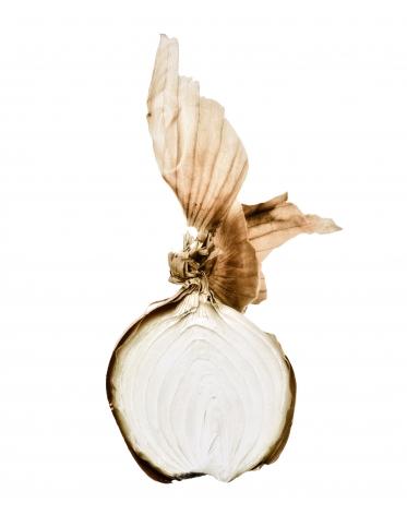 Oignon (Onion), 2002, Edition 3/6, printed 2003