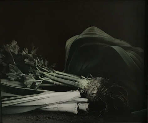 Ingar Krauss (b. 1965, Berlin)