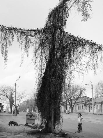 Odessa, Ukraine,2004, Gelatin silver print