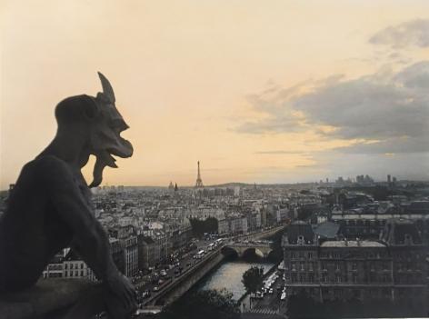 Chimera's View of Paris