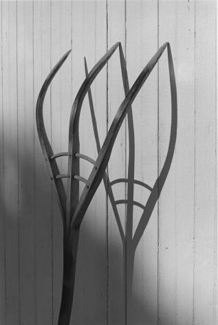 Hayfork, Lancaster, Pennsylvania, 1968, printed 2015