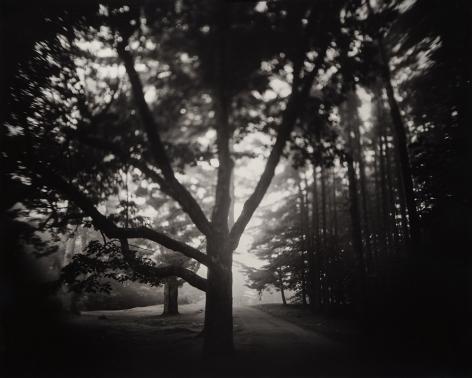 Sumner Wells Hatch (b. 1984, New Hampshire)