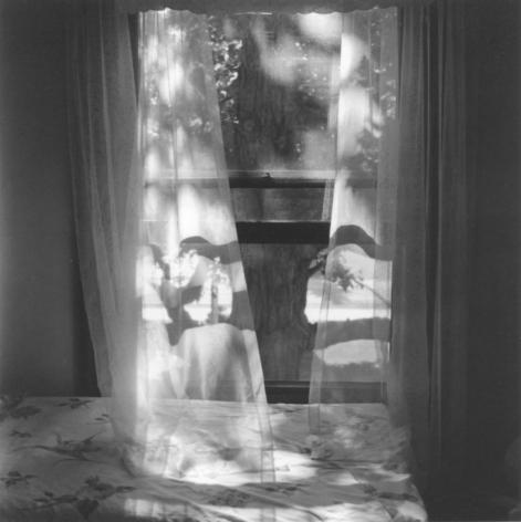 Light Breeze, 1997, Gelatin silver print