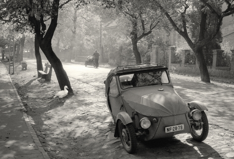Miskolc, Hungary (duck and car), 1979