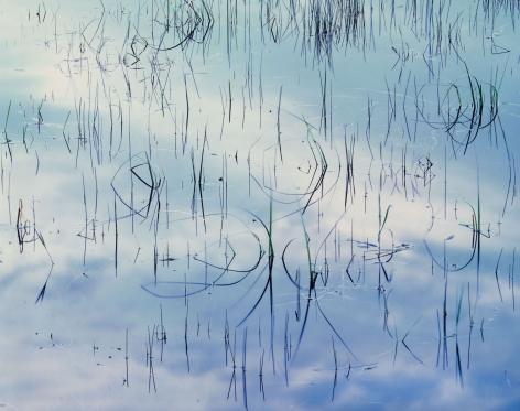 Blue Scherzo, Maine, 1987