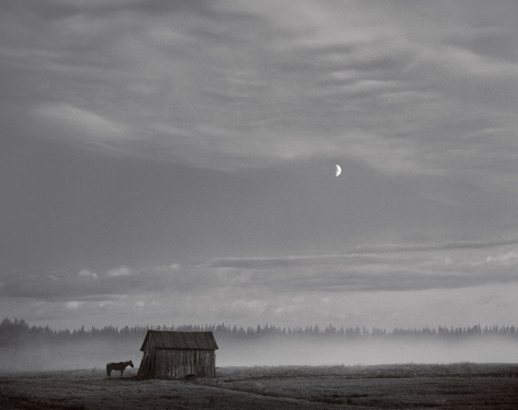 Pyhajarvi, Finland (horse and barn), 1982