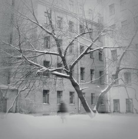Tree in Snow, St. Petersburg, 1997