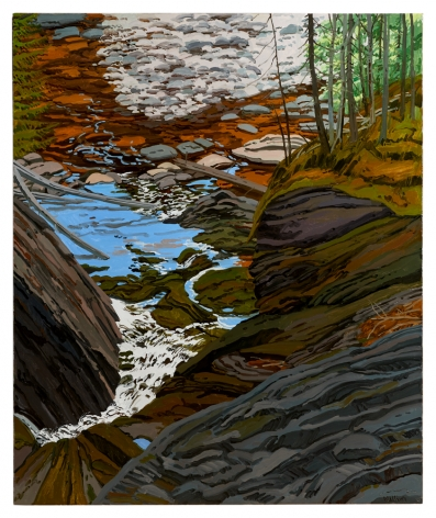 Neil Welliver Bear Hole from Above, 1991