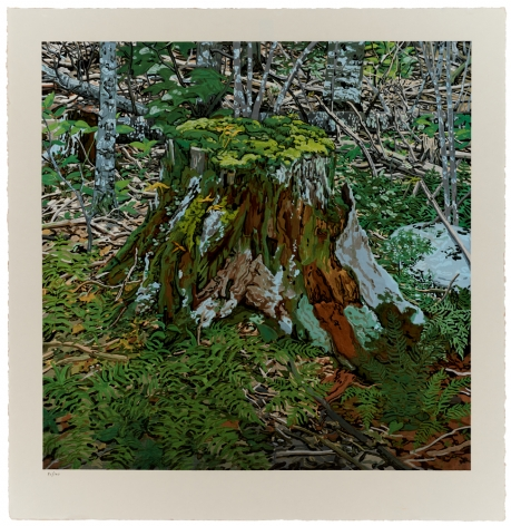 Neil Welliver Stump, 2000
