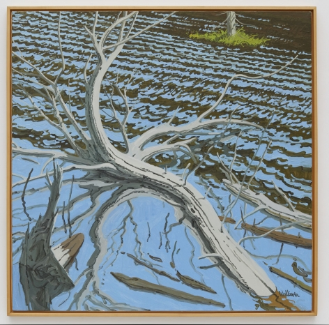 Neil Welliver Drowned Tree, 1983