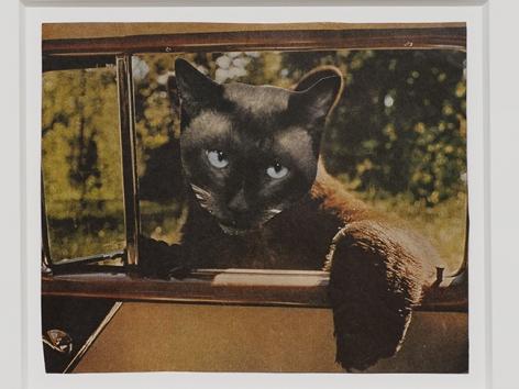 Jean Conner Bearcat, ca 1980